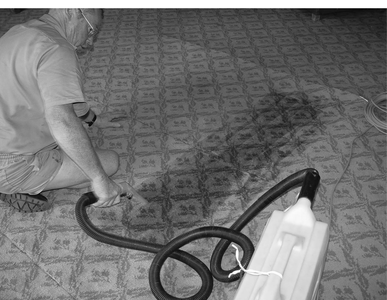 Carpet being cleaned after a minor water leak in the Government Party Room, 2005.